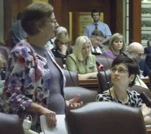 Rep. Helen Rankin (D-Hiram) speaks to address her colleagues in the House (2013).